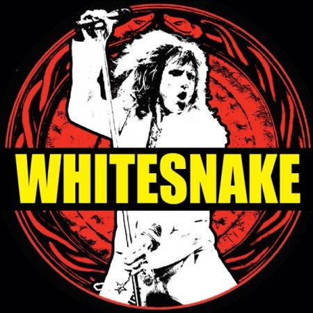 11 ноября, Whitesnake & David Coverdale