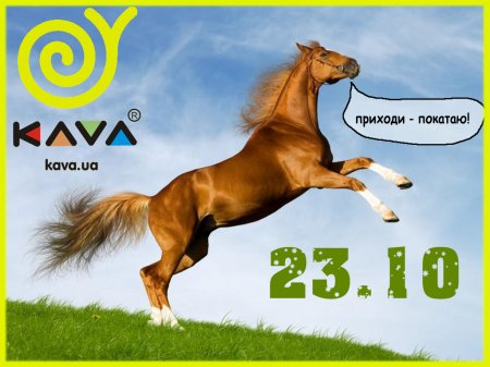 23 октября, Катание на лошадях с KAVA