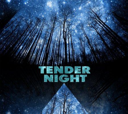 14 января, Tender Night (ambient, idm, industrial) в Неизвестном Петровском!