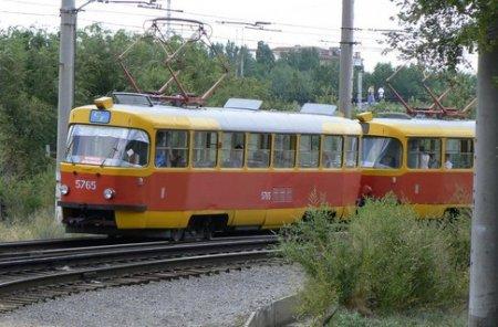 Однодневные проездные за 5 гривен позволят кататься неограниченно