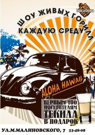 12 декабря, Aloha Hawaii