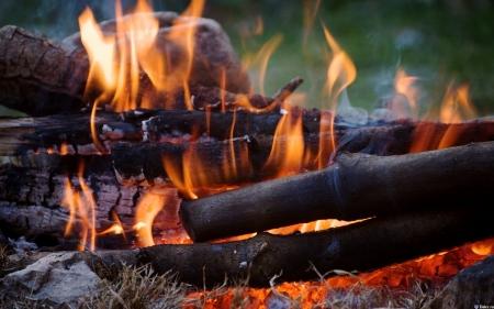 Любителям отдыха на природе придется запастись огнетушителями
