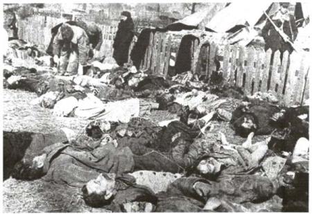 Колесниченко наградили, но геноцидом не признали
