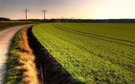 Китай арендует в Украине 3 млн. га сельхозугодий на 50 лет