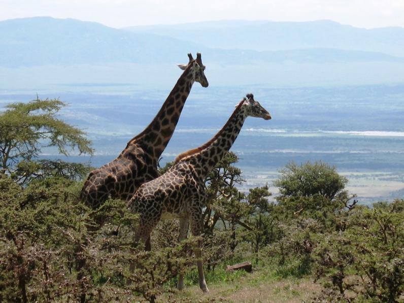 Путешествие по Африке. Часть 1