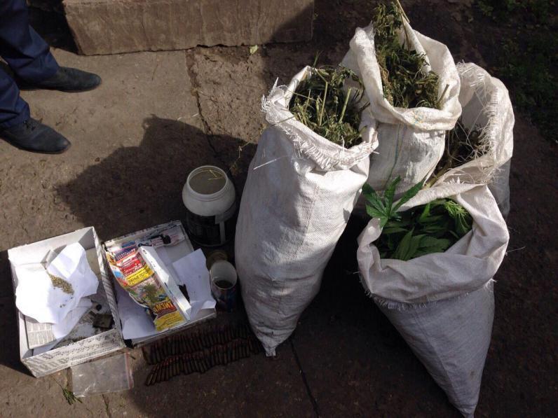 На Днепропетровщине полицейские собрали наркотиков на миллион гривен