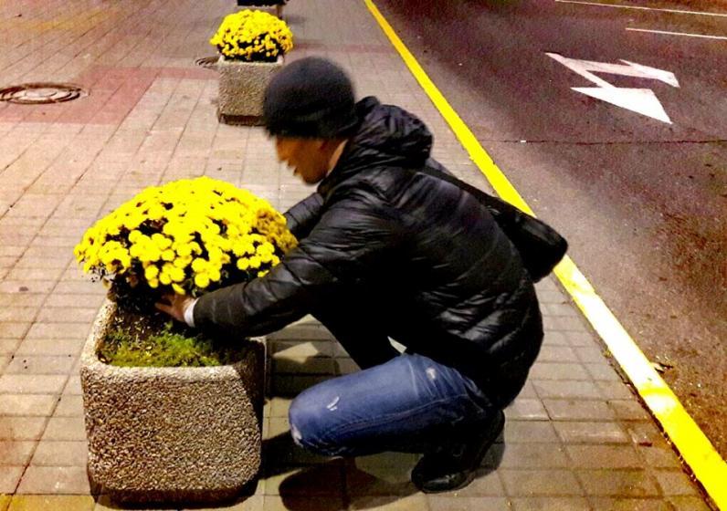 В Днепре полицейские поймали мужчину с украденным кустом хризантем и заставили посадить его обратно