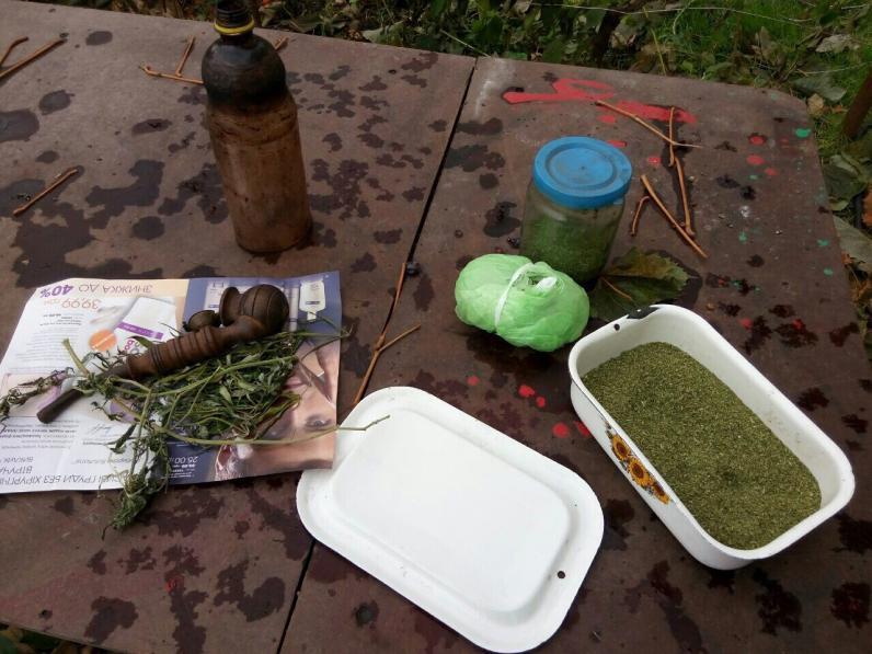 На Днепропетровщине полицейские нашли марихуану на 100 тыс. грн.