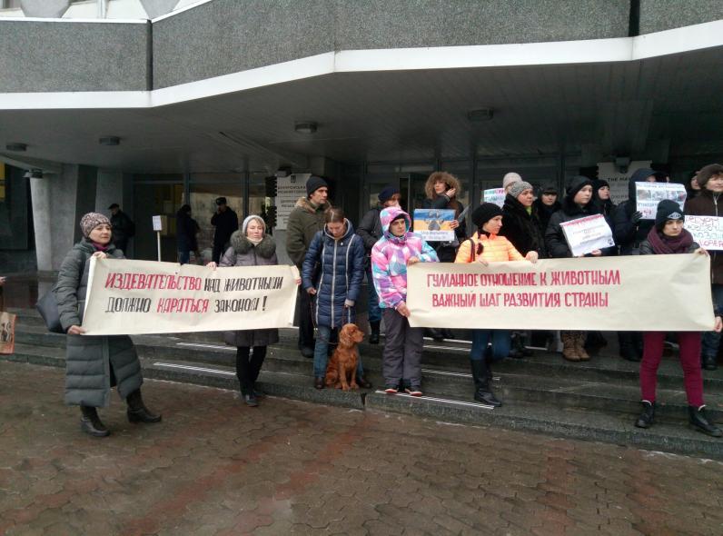 В Днепре митингуют против жестокого обращения с животными