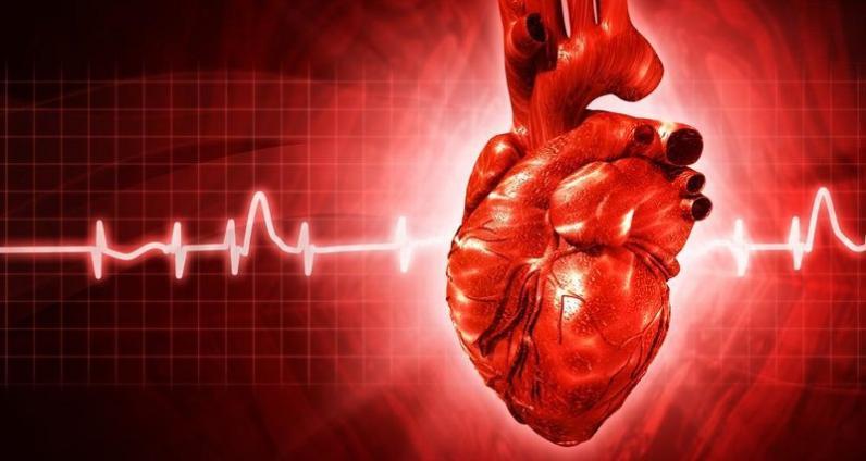 В Днепре можно бесплатно обследовать сердце