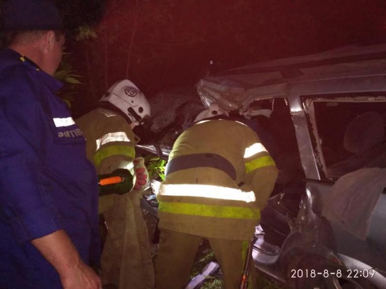 ДТП на Днепропетровщине: автобус слетел в кювет