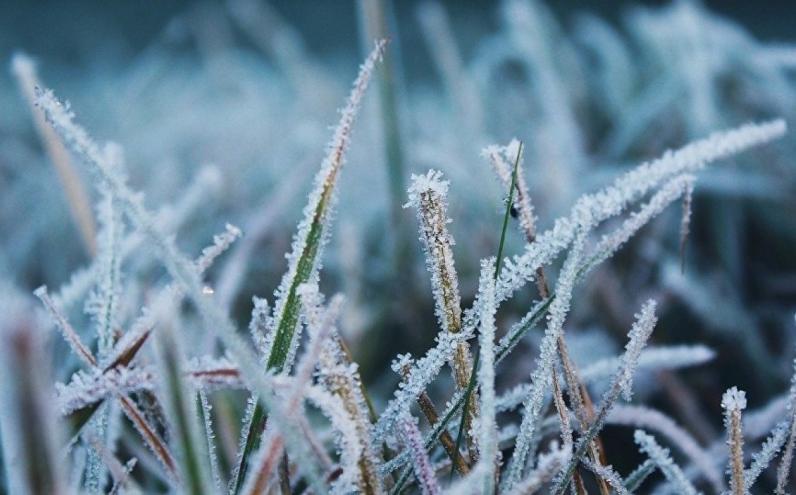 На Днепропетровщине сегодня ночью будут заморозки