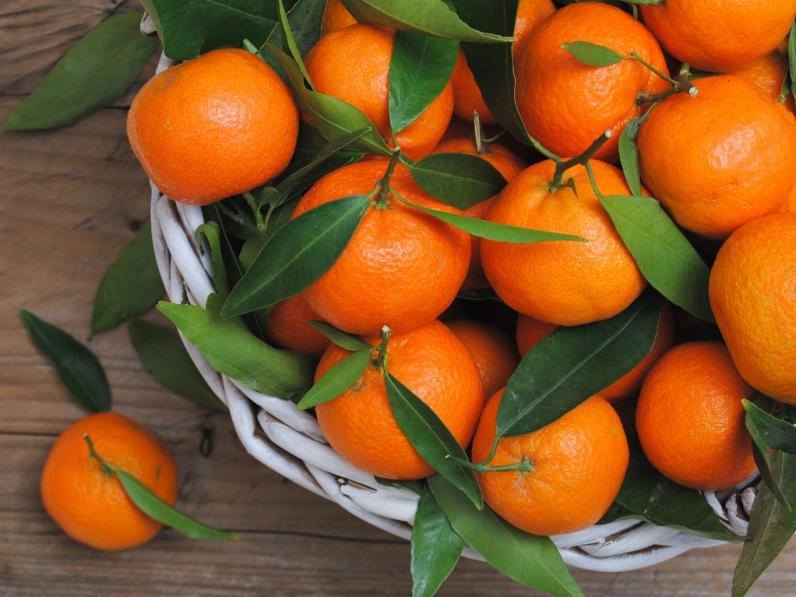 Как выбрать по-настоящему полезные мандарины