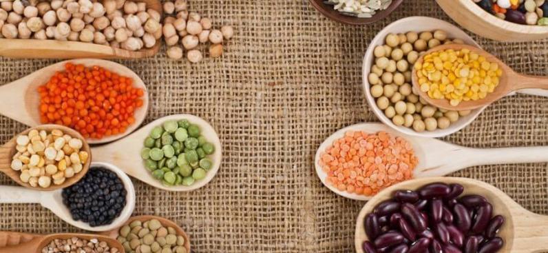 8 растительных продуктов с высоким содержанием белка