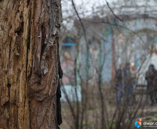 Парк Живых и Мертвых 716
